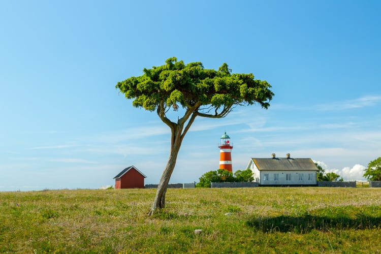things to do in gotland